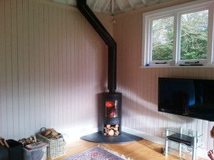 Contura 550 wood burning stove